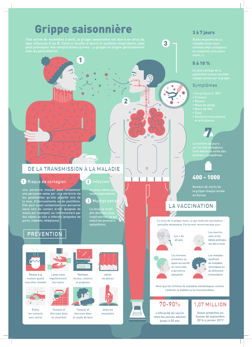 Infographique grippe saisonnière