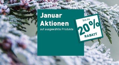 Monatsaktionen Januar