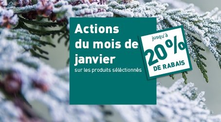 Actions janvier